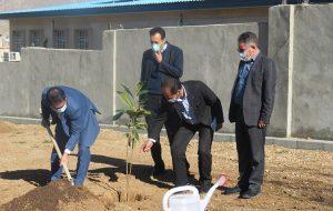 بمناسبت روز درختکاری صورت گرفت؛ غرس نهال در محوطه اداری شرکت آب منطقه ای ایلام با حضور مدیر عامل